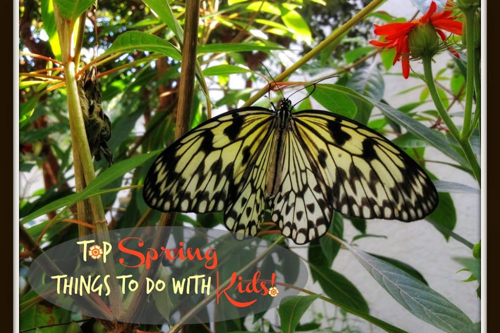 "Our Top Spring ""Things to Do"" with Kiddos"