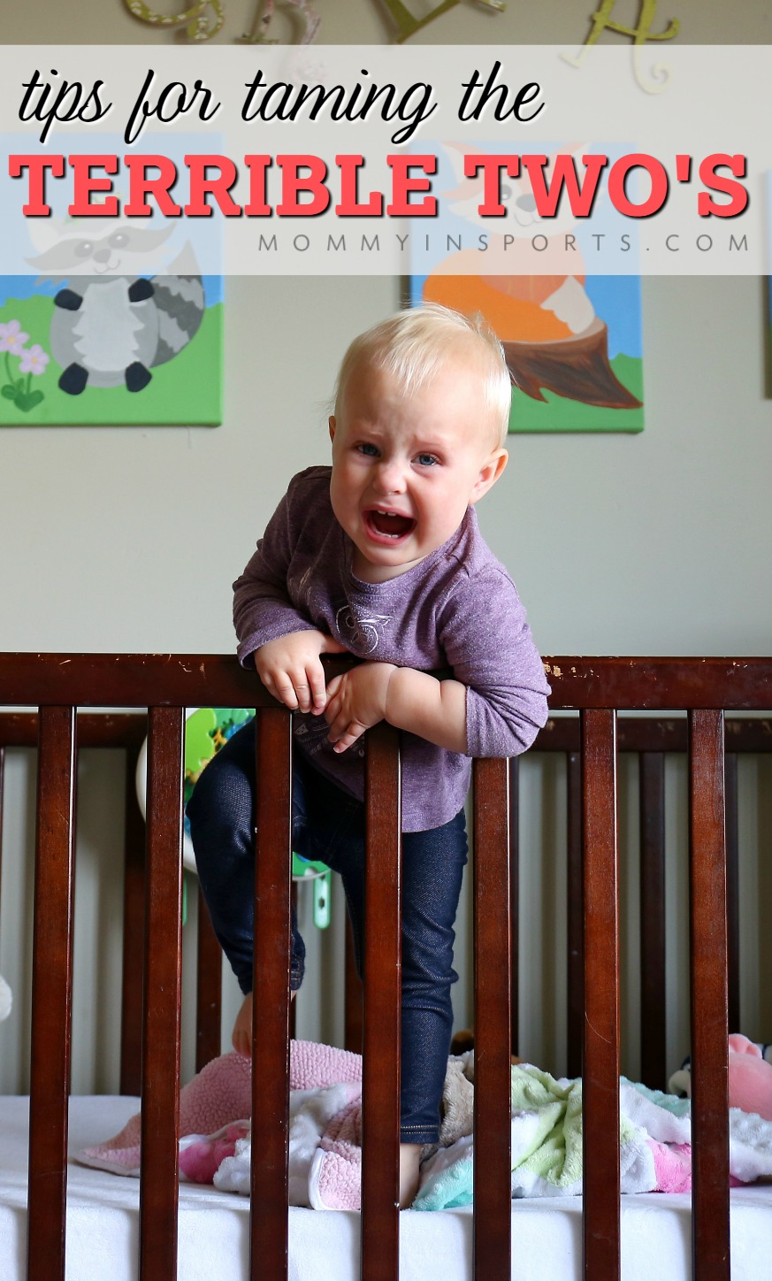 Do you struggle with your toddler? Tantrums, mealtimes, and naps...oh my! The Terrible Two's are hard, but you CAN tame them with these tips!