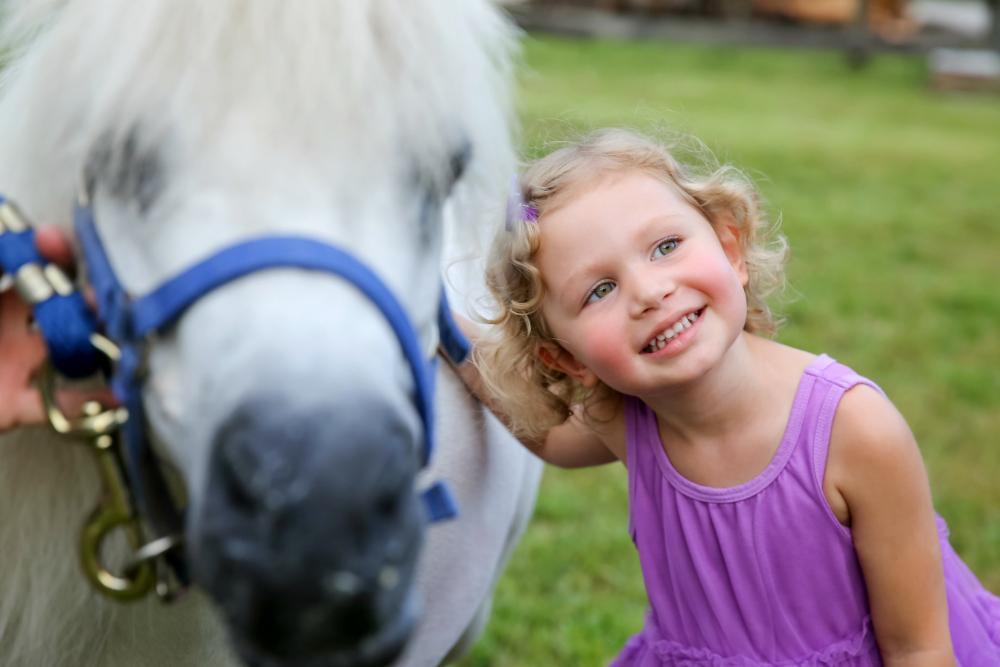Emy pony