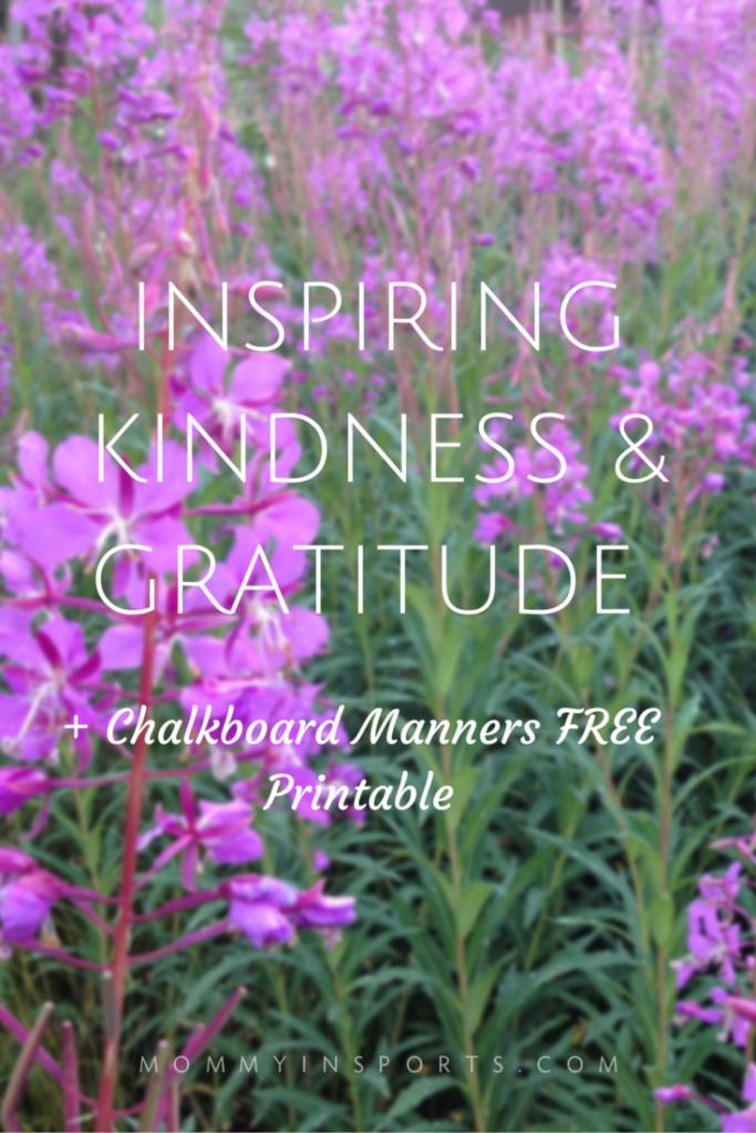 INSPIRING KINDNESS & GRATITUDE