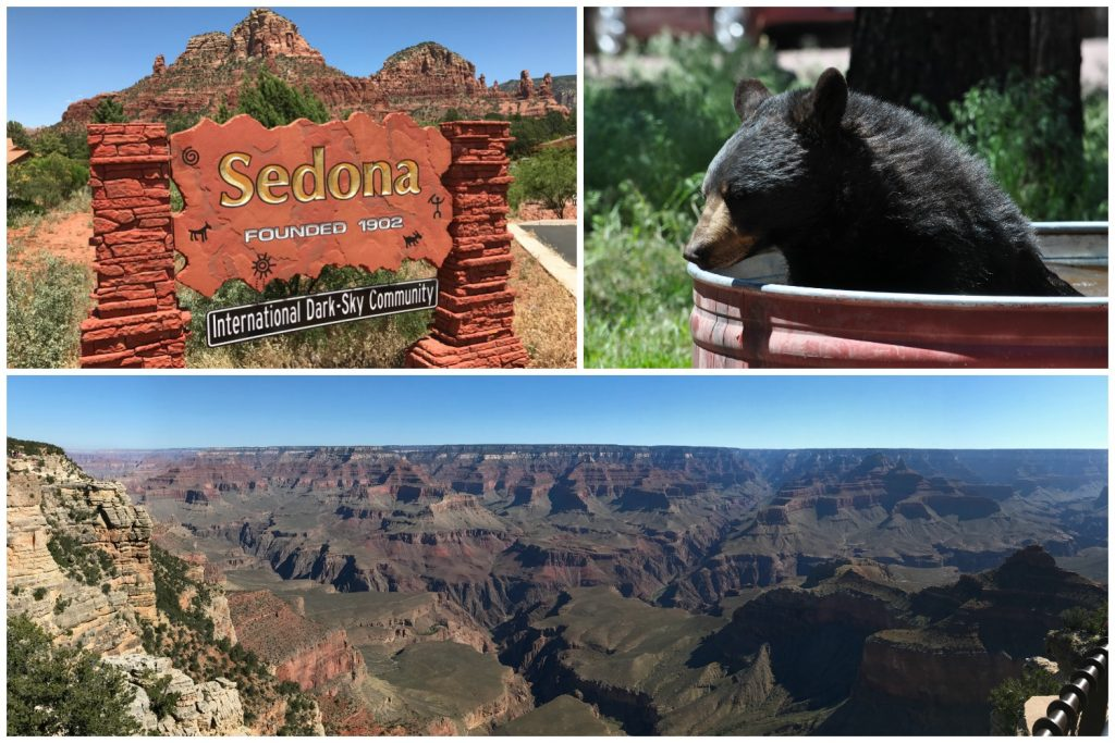 Top 5 Things to Do in Arizona with Kids