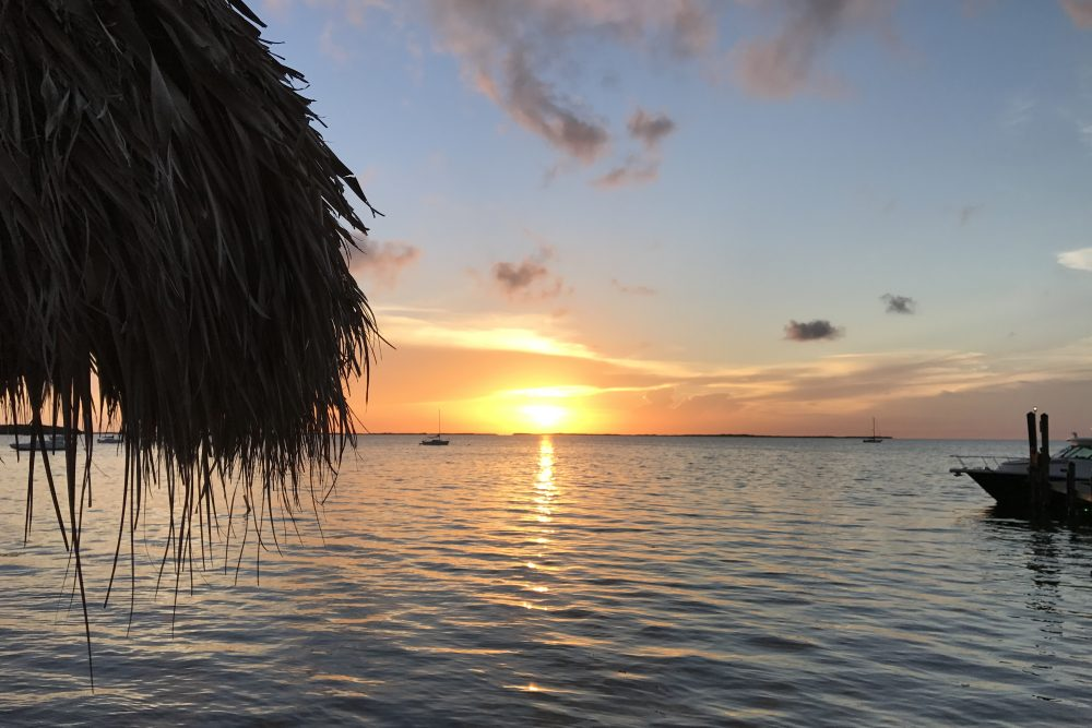 Top 5 Things To Do in Key Largo with Kids